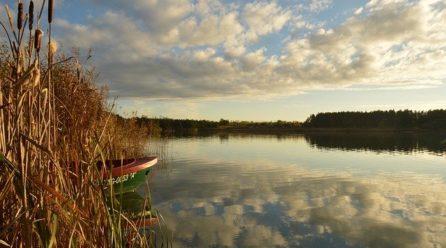 Jezioro Studzieniczne: co warto zobaczyć?